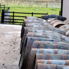 樽/ウイスキー樽/ウイスキー/スコットランド/おでかけ お好きな人にはたまらないでしょう、ウイス…
