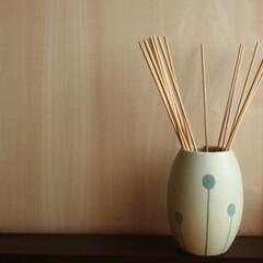 aroma diffuser/アロマディフューザー/一輪挿し/花瓶/花器/vase チェコは、落ち葉までもがかわいらしく感じ…