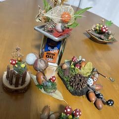 秋/紅葉/きのこ/どんぐり/鍋料理/カボチャ/... きっかけは 昨日 同僚から 😚鍋のコーナ…(1枚目)