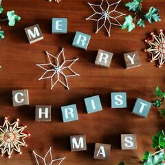 ワイヤークラフト/クリスマスアイテム/クリスマス雑貨/オーナメント ワイヤーで作った雪のオブジェを、ホワイト…