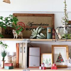 刺繍/クロスステッチ/ハンドメイド/珈琲豆の袋/無印良品/フェイクグリーン/... 我が家の仕事スペースの横は、無印良品の棚…
