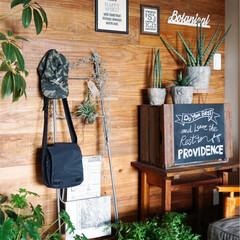 ディスプレイ/グリーン/足場板/観葉植物/フェイクグリーン/インテリアグリーン/... 壁に足場板を貼った和室。。。 グリーンと…