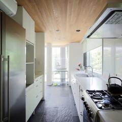 キッチン/リーブヘル冷蔵庫/オウム鳥かご ミッドセンチュリーテイスト 居間がテラス…