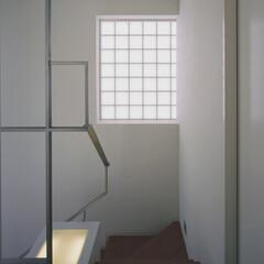 階段 ミッドセンチュリーテイスト 居間がテラス…