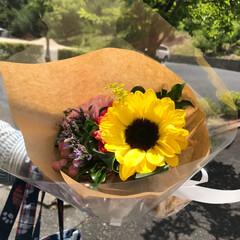 父の日 父のお墓参りへ 可愛いお花買ってお参り …