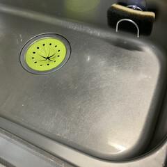 シンク掃除/キッチン/住まい/掃除/暮らし ウタマロクリーナーとはっか油でシンクもぴ…