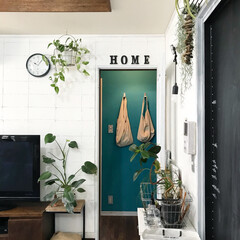 ブロック壁風/発泡スチロールレンガ/発泡スチロール/グリーン/植物/グリーンのある暮らし/... テレビ裏には発泡スチロールでレンガブロッ…