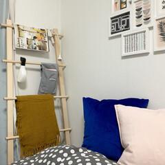 アートフレーム/ラダー/クッションカバー/寝具/インテリア/イケア/... 寝室の写真です(^ ^) フレームやラダ…