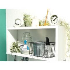 洗面所インテリア/洗面所/棚DIY/漆喰壁/ボタニカル/雑貨/... 洗面所の写真(^^) 洗面所は自分で漆喰…