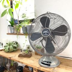 ハモサ/扇風機/インテリア/LIMIAインテリア部/DIY/暮らし/... ちょっと早いですが扇風機を掃除してだしま…