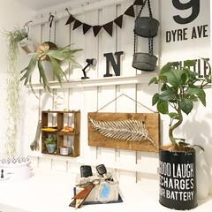 玄関/玄関インテリア/ディスプレイ棚/すのこ棚DIY/すのこ棚/DIY/... 玄関の靴棚上の写真です(^^) すのこを…