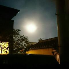 冬 きれいなお月様🌕 📷じゃちょっと伝わりに…