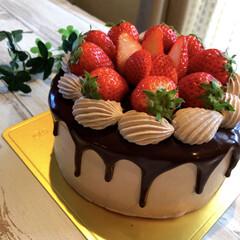 チョコ大好き/苺ショート/苺ケーキ/手作りお菓子/手作りおやつ/チョコケーキ/... ずっと作りたかった たらりんチョコのイチ…