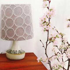 北欧インテリア/北欧家具/花のある暮らし/北欧雑貨/北欧ビンテージ/北欧/... ミナペルホネンのタンバリンと桜🌸 春が来…