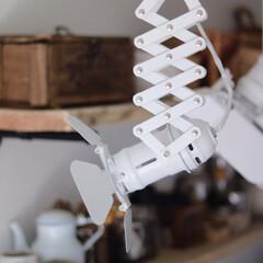ボヘミアンインテリア/スタジオ風/スタジオ照明/キッチン/スポットライト/インテリア お気に入りのキッチンのスタジオ照明♬伸び…