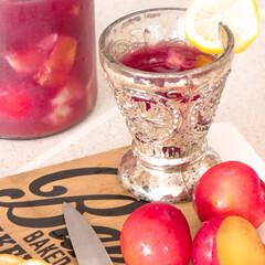レモン/赤ワイン/プラム/サングリア 甘いプラムが手に入ったので、サングリアを…