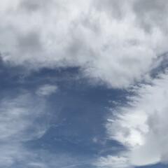 可愛い空/曇り/晴れ/散歩/さんぽ/おさんぽ/... こんにちは(o^^o) いつもありがとう…