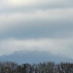 冬景色/雪景色/雪/初雪/伊勢原市大山/大山/... おはようございます(o^^o) いつもあ…