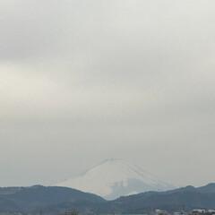ナチュラルな暮らし/ナチュラル/雪山/ハッピースプリング/spring/スプリング/... こんにちは(o^^o) いつもありがとう…