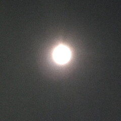 1月/一月/冬空/空の写真/夜空/おつきさま/... スーパームーン (*˘︶˘*).。.:*♡