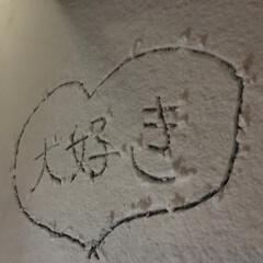 わ〜い/わーい/雪積もった/雪/スノー/バージンスノー/... ❄️雪ゆき❄️ 積もった〜(*ฅ́˘ฅ̀…