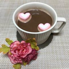 ラブラブマシュマロ/美味しい/可愛い/可愛いマシュマロ/ニトリマグカップ/ニトリ/... こんにちは(o^^o) いつもありがとう…