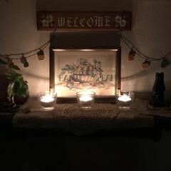 灯り/灯す/キャンドルホルダー/キャンドル/ポトス/観葉植物/... こんばんは(o^^o) いつもありがとう…