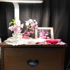 ハッピーホワイトデー/レースドイリー/レース編み/お花のある暮らし/花のある暮らし/花/... こんばんは(o^^o) いつもありがとう…