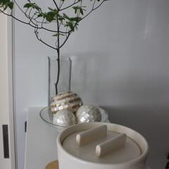 雑貨だいすき/おひつ/炊き立てごはん/毎日の食卓/シンプル/インテリア 陶器のおひつを愛用しています。 ガスで炊…