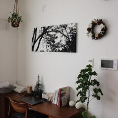 雑貨/ファブリックパネル/マリメッコ/プリザのリース/観賞植物/ハンギングバスケット/... こちらはワークスペースになります。 壁面…