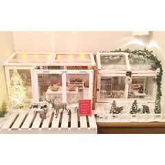 ミニチュア/シューズボックス/クリスマス/動物フィギュア/100均/フォトフレーム/... 粘土で作ったミニチュアパンと100均のミ…