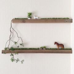 ウォールバー/ウォールデコ/フェイクグリーン/ミニチュアの木/ミニチュア/足場板/... 100均材料二種で木を作ろう♪の応用で、…