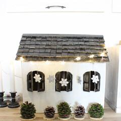 ダンボール/松ぼっくりツリー/オーナメント/クリスマス/ダンボールハウス/セリア/... ダンボールで作ったおうちと松ぼっくりツリー