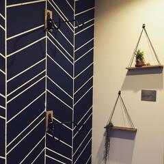 玄関/セルフリフォーム/壁塗装/柄壁/塗装/DIY/...