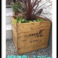 ステンシル/植木鉢カバー/DIY/雑貨/玄関/収納/... 1×4で植木鉢カバー GEEN LIFE…