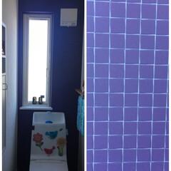 住まい 我が家の二階のトイレ 壁紙をパープルにし…