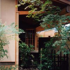 露地/和風/化粧軒裏 玄関前の露地