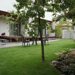 芝生/ジェフリーバワ/ウッドデッキ/石テラス ジェフリーバワをイメージしたお庭