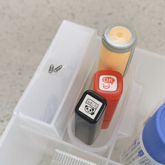 整理収納アドバイザー/文房具収納/100均/無印良品/セリア 久しぶりのシンデレラフィットに身体が震え…(1枚目)