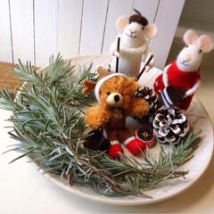 食器/皿/プレート/デッシュ/キッチン/ラベンダー/... お皿の上の〜★クリスマス★