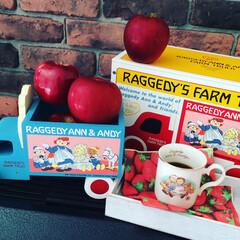 雑貨/インテリア/ディスプレイ/りんご/果物/くだもの/...  これから りんごを 使った お菓子や …