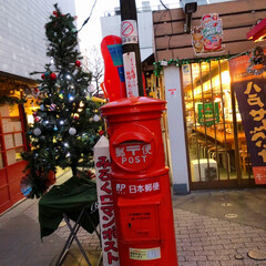 青森県/八戸/東北/観光スポット/観光 八戸みろく横丁  クリスマスバージョン🎅