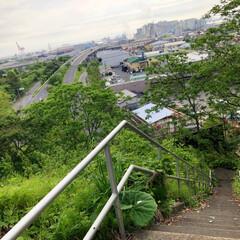 災害/震災/地震/避難所/裏山/公園/... 昨日の〜朝♡あさんぽした裏山の公園からの…