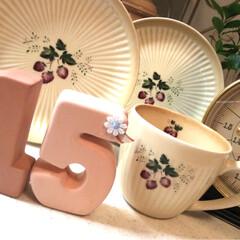 カップ/ディッシュ/コーヒー マイカップ♪マイディッシュ♪ イチゴ柄、…(1枚目)