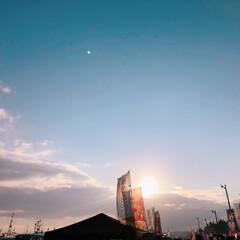 小さい春/春/朝市/海/空/船/... 青森県八戸市の 館鼻岸壁のビッグな朝市で…