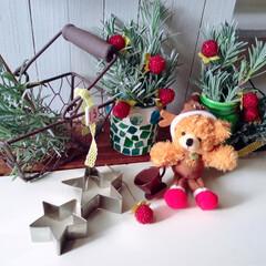 ラベンダー/星/クッキー/100均/アイデア/クリスマス/... クリスマス★イメージ雑貨ディスプレイ★