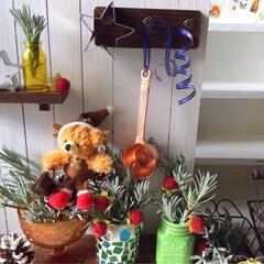 クリスマス/クリスマスツリー/ラベンダー/ハーブ/キッチン/コーヒー/... キッチン★ラベンダーツリーの〜おうちカフ…