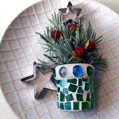 クリスマス/クリスマスツリー/ラベンダー/ハーブ/星型/クッキー/... ラベンダーの葉のクリスマス★ツリー