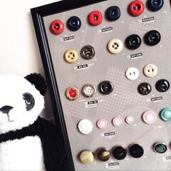 ボタン/フレーム/雑貨 ボタンサンプル ★B4サイズ 台紙付き★…