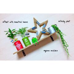 ガーデニング初心者/ガーデン雑貨/ベランダガーデン/観葉植物/多肉植物/グリーンネックレス/... 新しくグリーンネックレス増えた♥︎